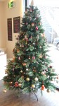 Christmas Tree At Espiritu